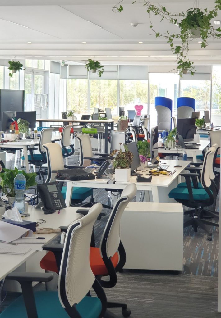 Emirates nbd offices with plant arrangements