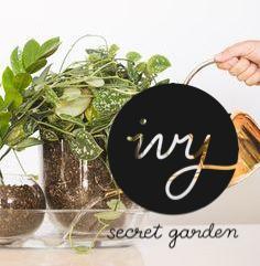 bottom watering
