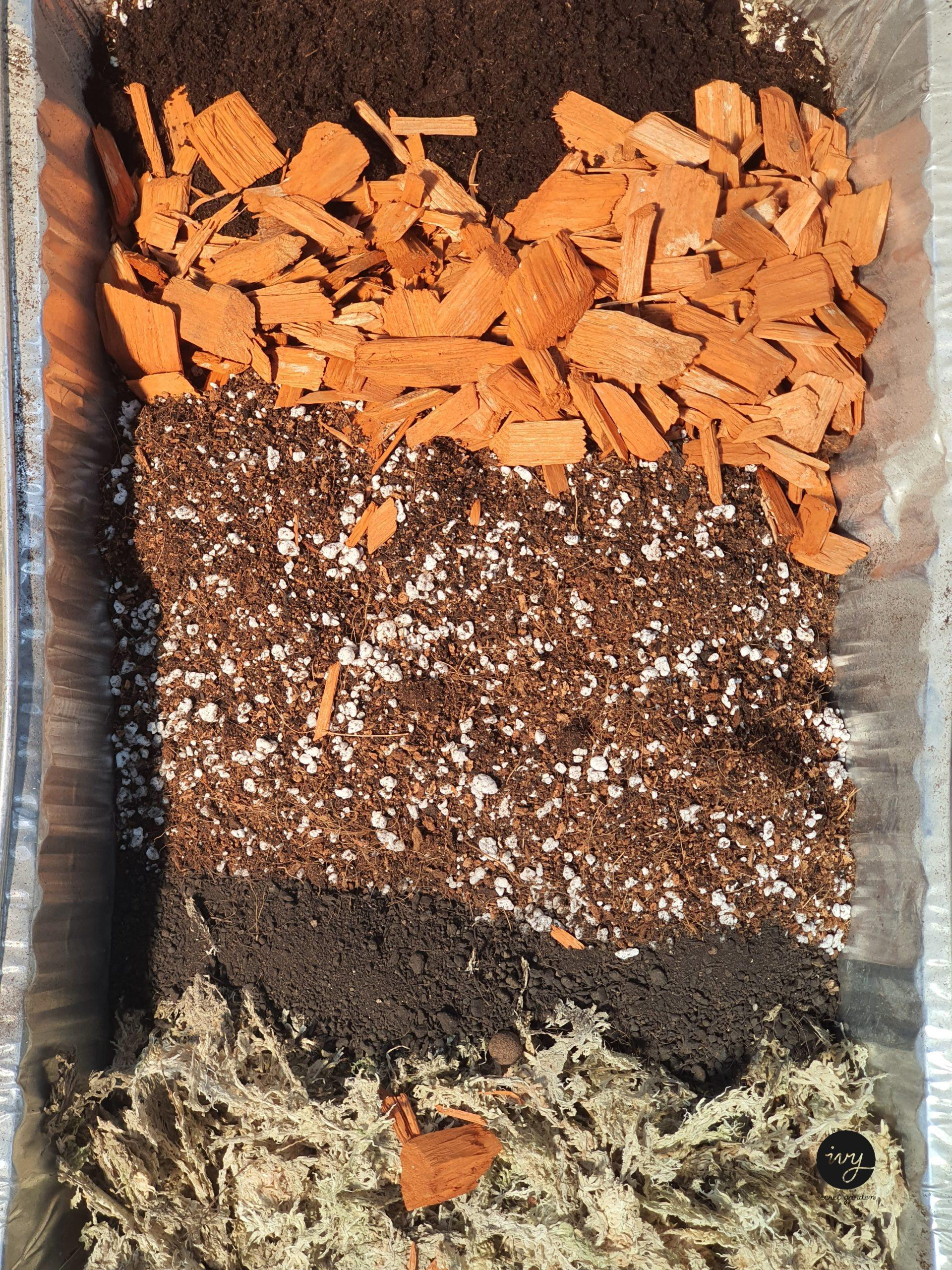 jungle mix soil
